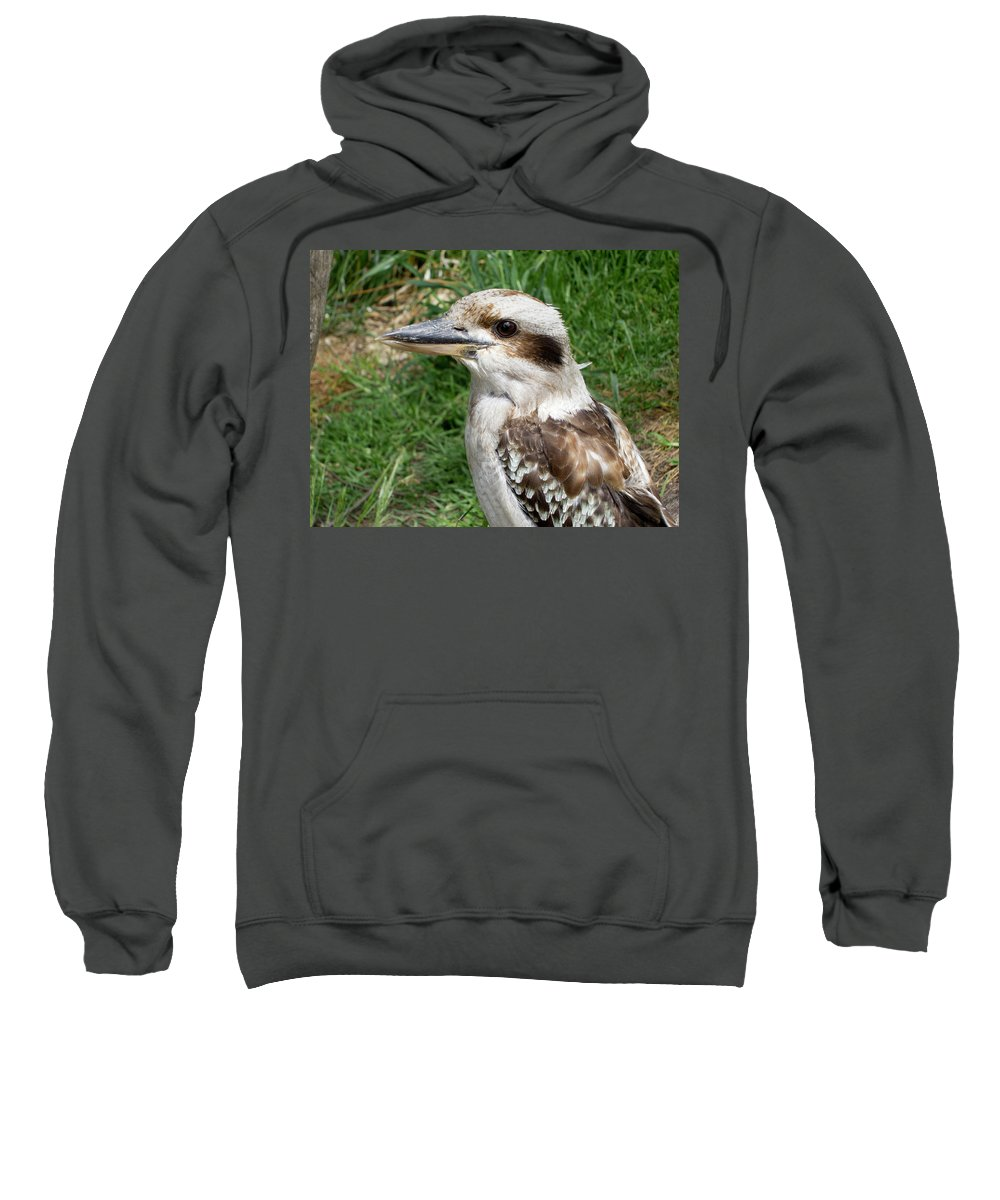 Laughing Sweatshirt featuring the photograph LOL by Douglas Barnard