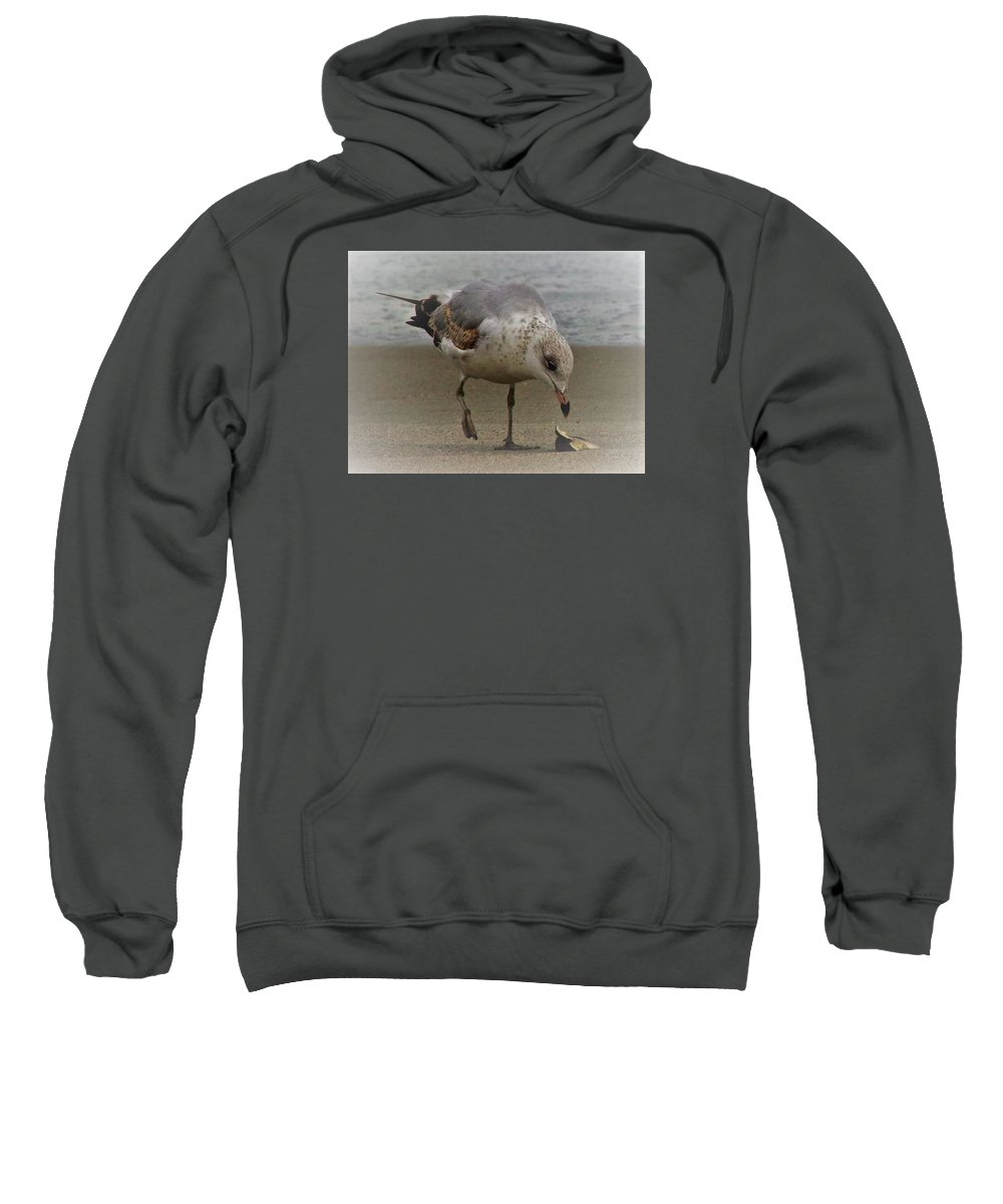 Seagull Sweatshirt featuring the photograph Lone Seagull by Judith L Schade