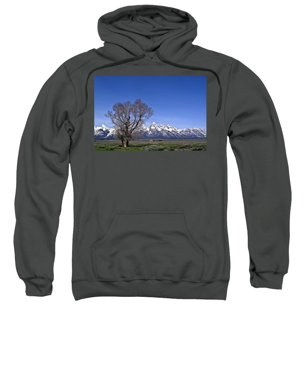 Tree Sweatshirt featuring the photograph Lone Tree At Tetons by Douglas Barnett