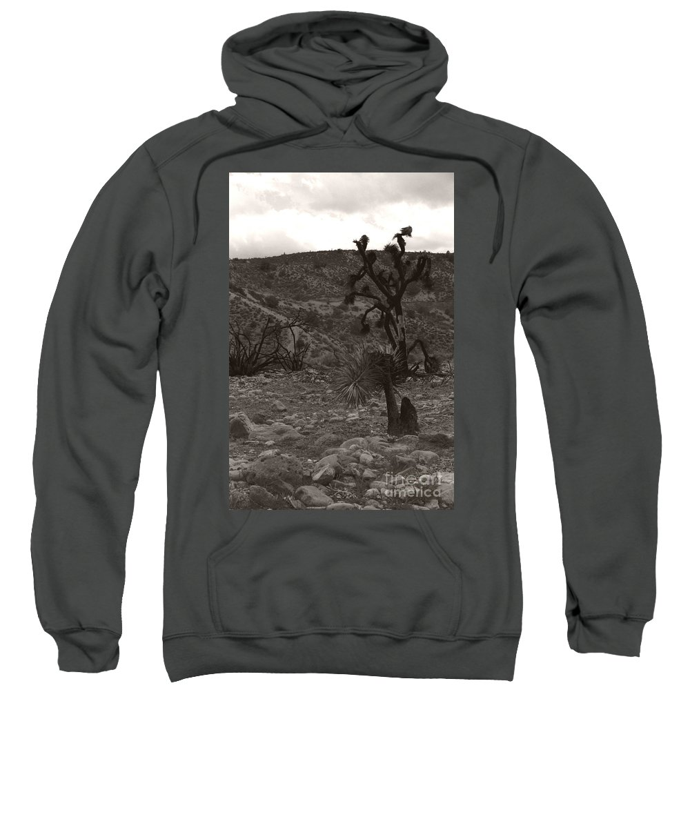 Sweatshirt featuring the photograph Looking To The Earth by Heather Kirk