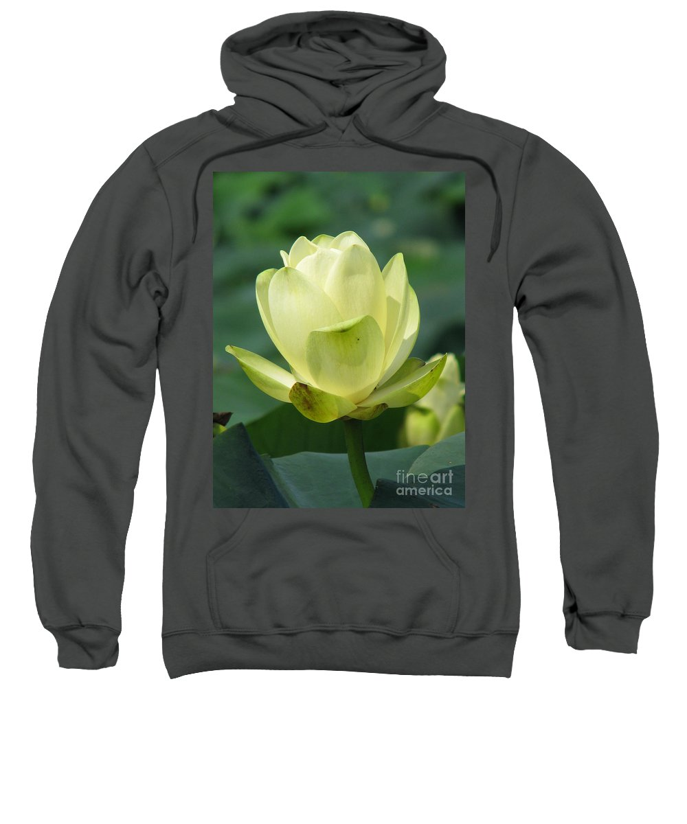 Lotus Sweatshirt featuring the photograph Lotus by Amanda Barcon