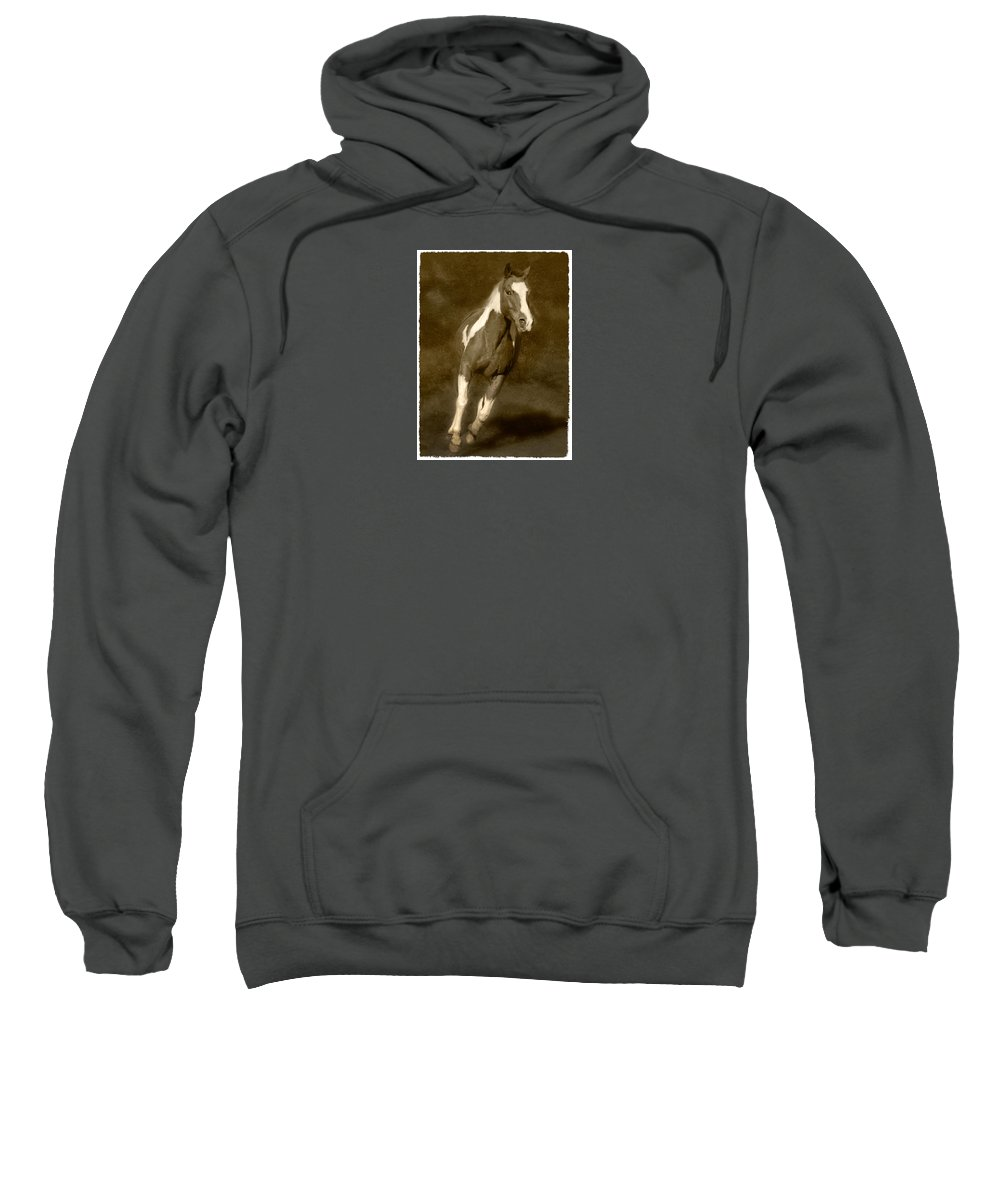 Horse Sweatshirt featuring the photograph Louie by Frederica Georgia