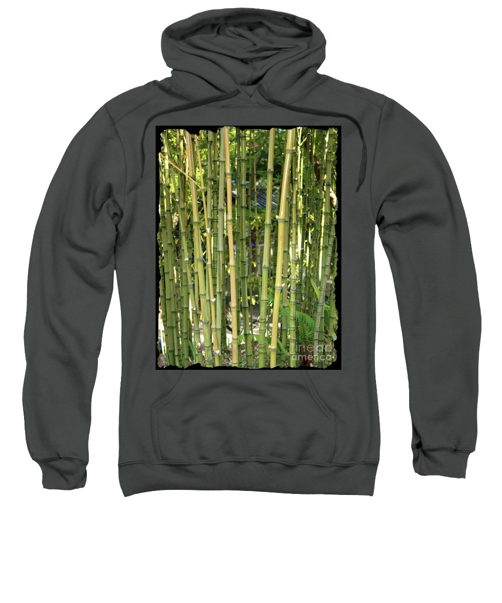 Bamboo Sweatshirt featuring the photograph Lucky Bamboo by Carol Groenen