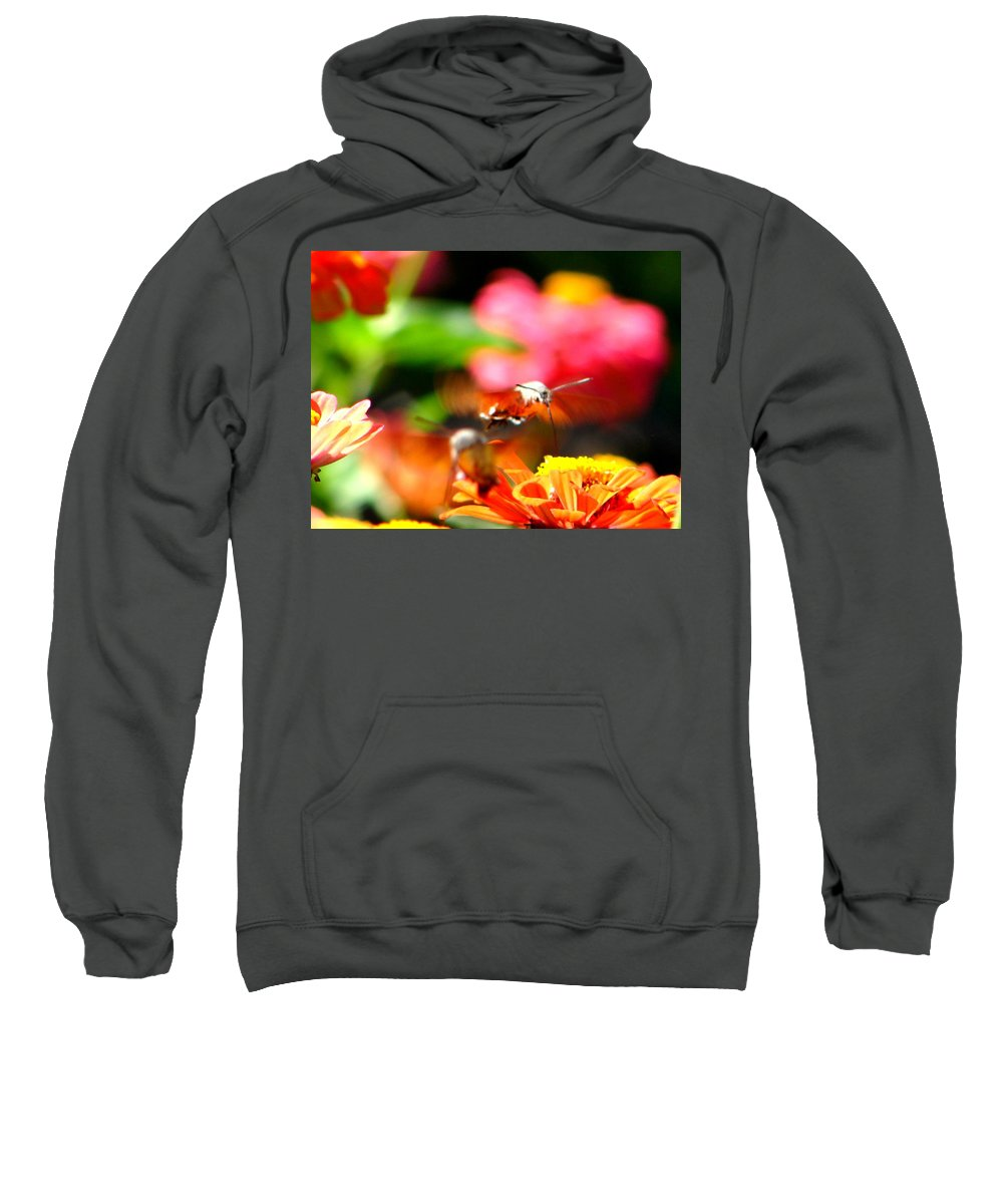 Nature Sweatshirt featuring the photograph Lucky Shot by Ana Maria Edulescu