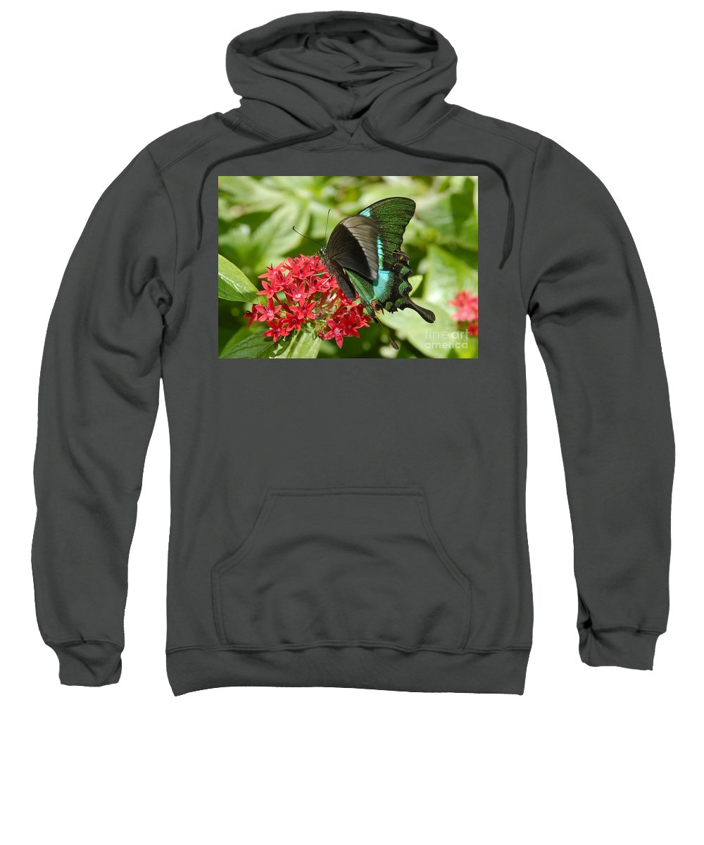 Luminescence Sweatshirt featuring the photograph Luminescence by David Lee Thompson
