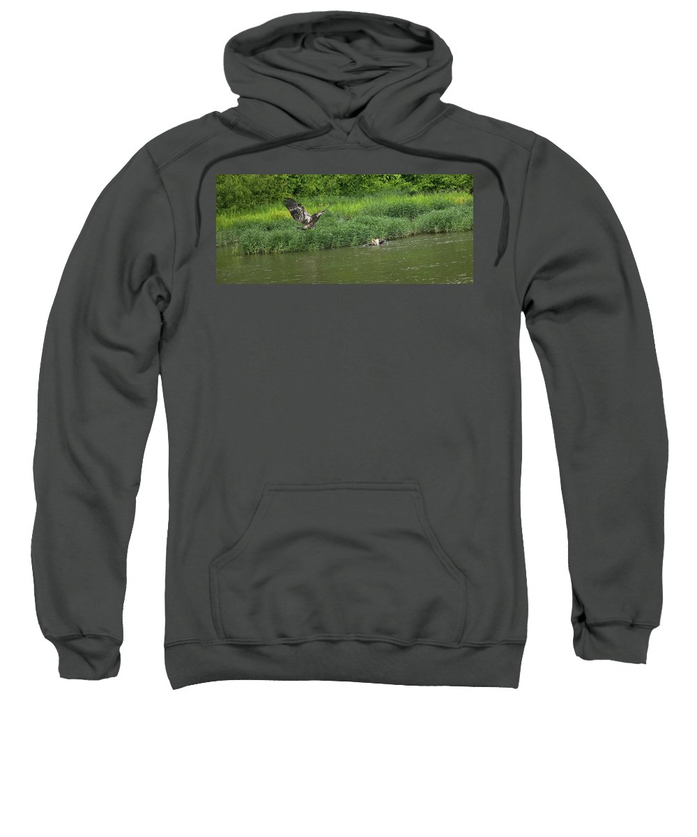 Bald Eagle Sweatshirt featuring the photograph Lunchtime On The River by John Prickett