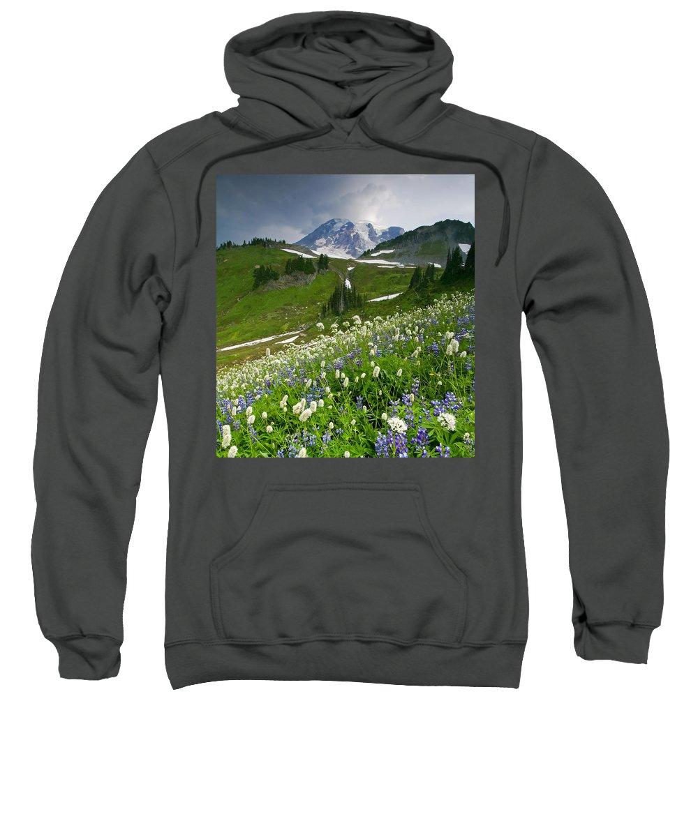Rainier Sweatshirt featuring the photograph Lupine Storm by Mike Dawson