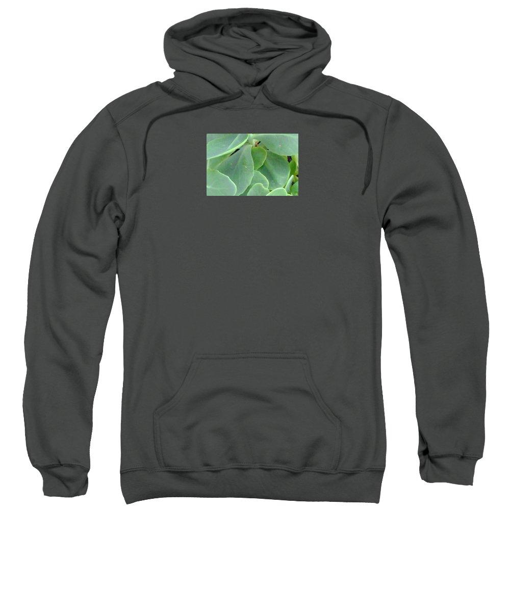 Totes Sweatshirt featuring the photograph Macro Green by Tonya Merrick