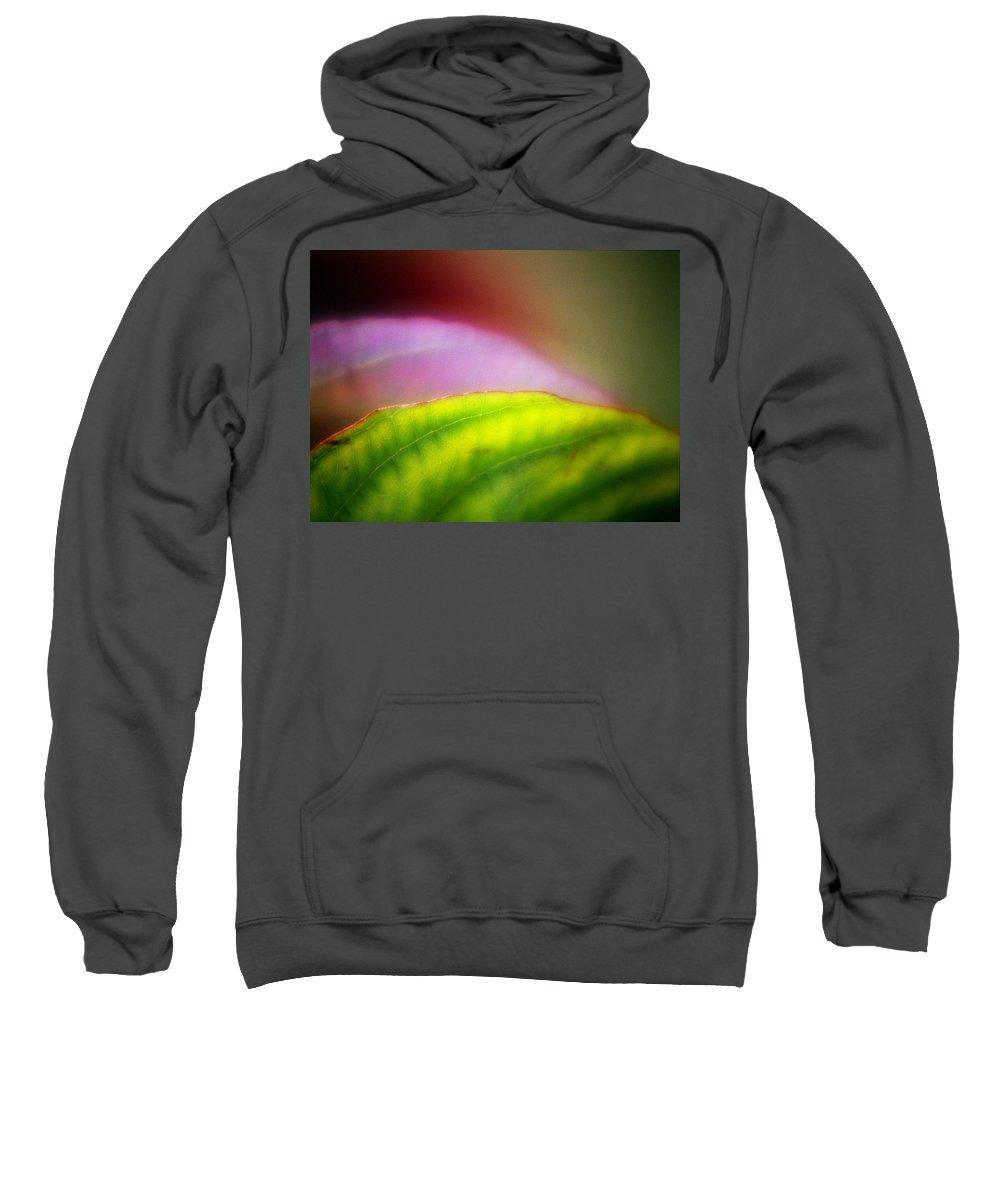 Macro Sweatshirt featuring the photograph Macro Leaf by Lee Santa