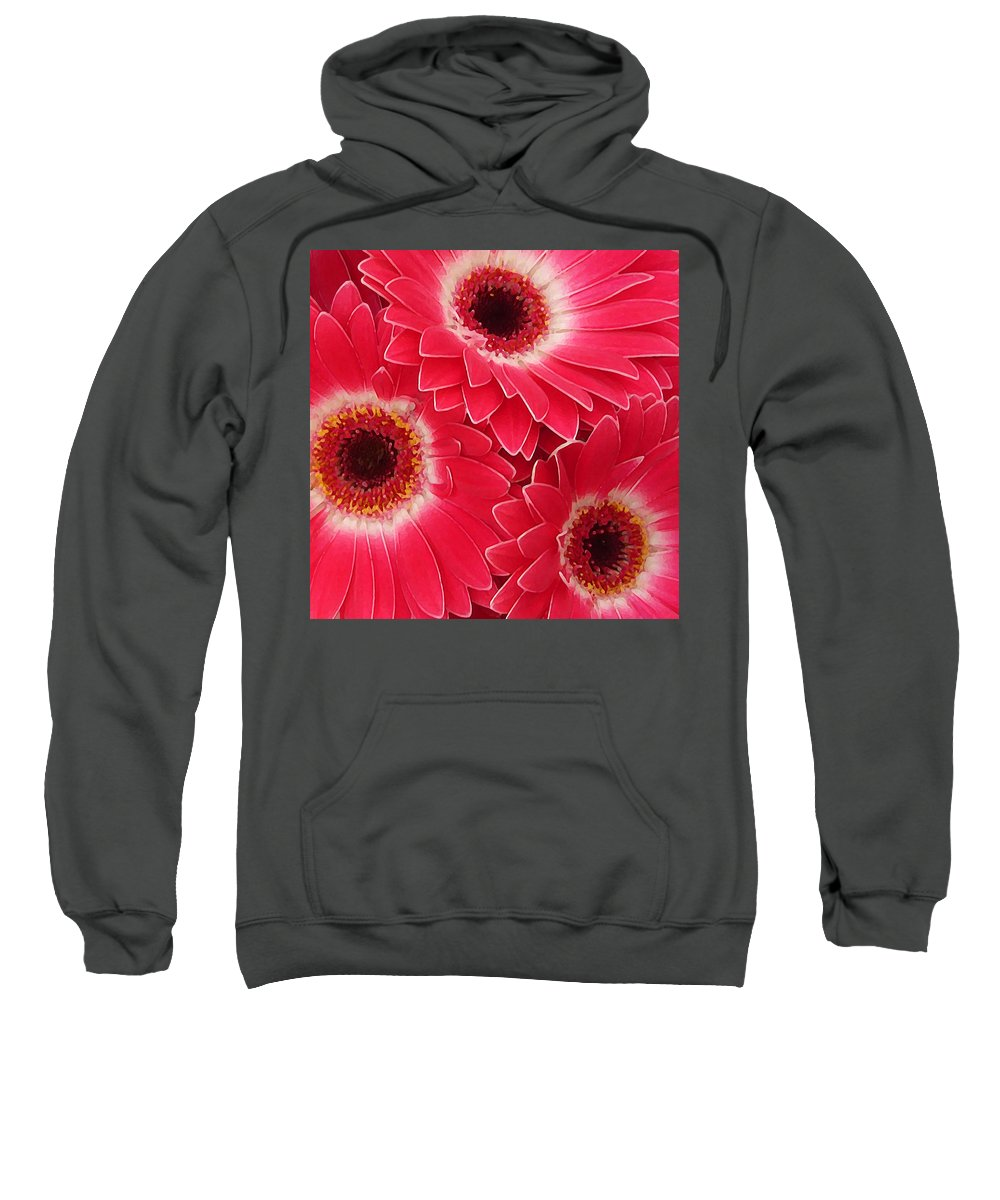 Daisy Sweatshirt featuring the painting Magenta Gerber Daisies by Amy Vangsgard