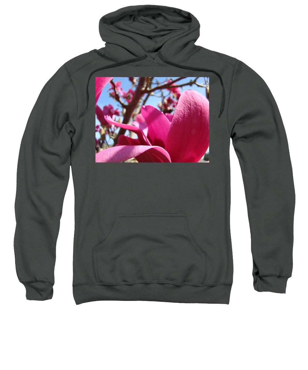 Magnolia Sweatshirt featuring the photograph Magnolia Tree Pink Magnoli Flowers Artwork Spring by Baslee Troutman