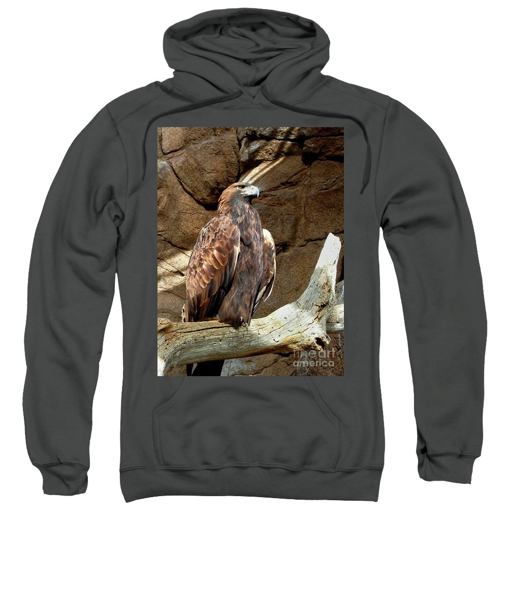 Majestic Eagle Sweatshirt featuring the photograph Majestic Eagle by Mariola Bitner