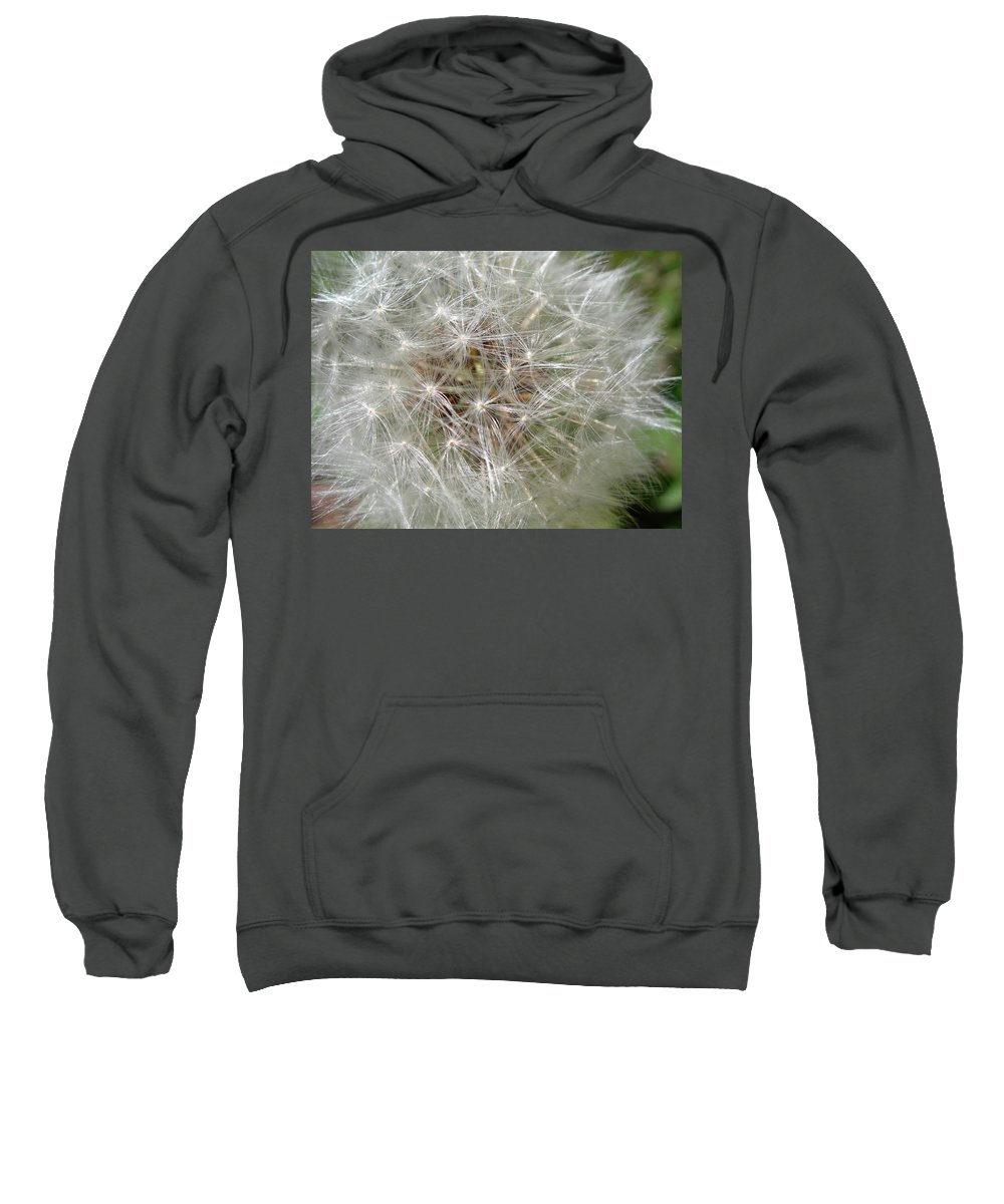 Dandelion Sweatshirt featuring the photograph Make A Wish by Sheryl R Smith