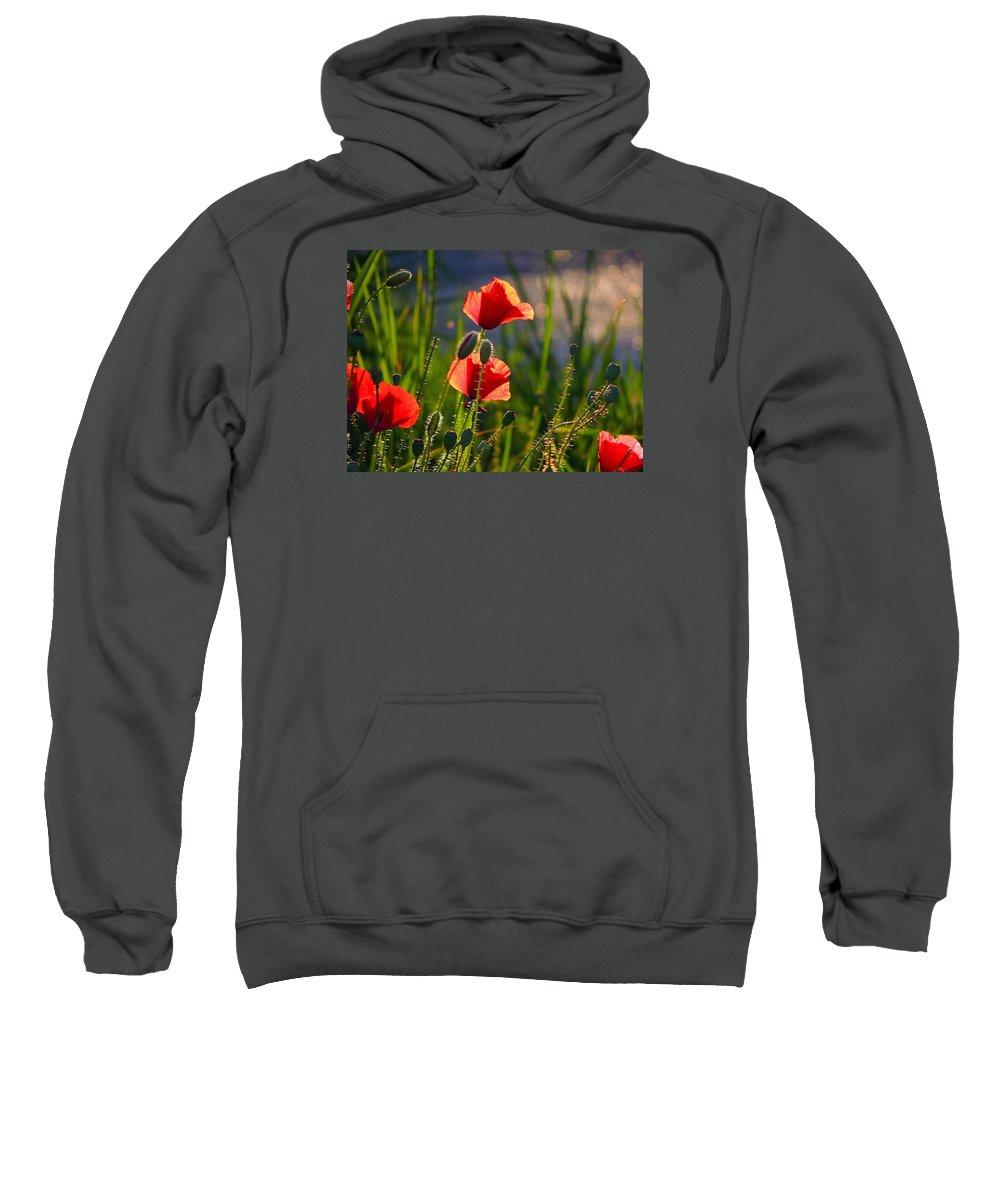 Poppies Sweatshirt featuring the photograph Maki by Bublikov Yury