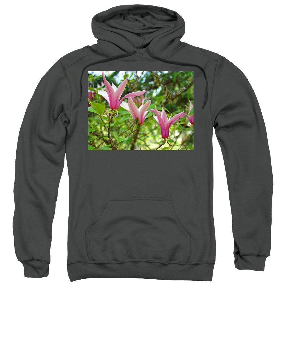 Magnolia Sweatshirt featuring the photograph Mangolia Tree Flowers Art Prints Pink Magnolias Baslee Troutman by Baslee Troutman