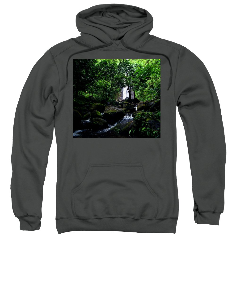 Hawaii Sweatshirt featuring the photograph Manoa Falls Stream by Kevin Smith