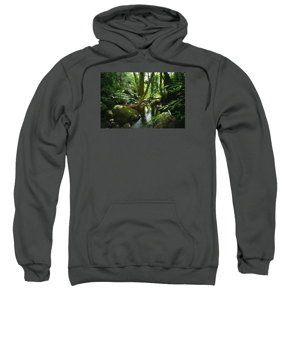 Green Sweatshirt featuring the photograph Manoa Valley Stream by Kevin Smith