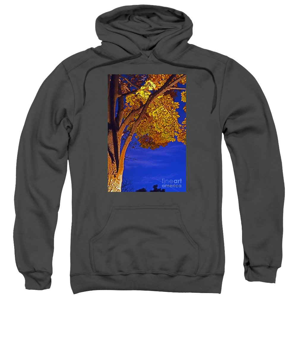Maple Tree Sweatshirt featuring the photograph Maple In The Night by Violeta Ianeva