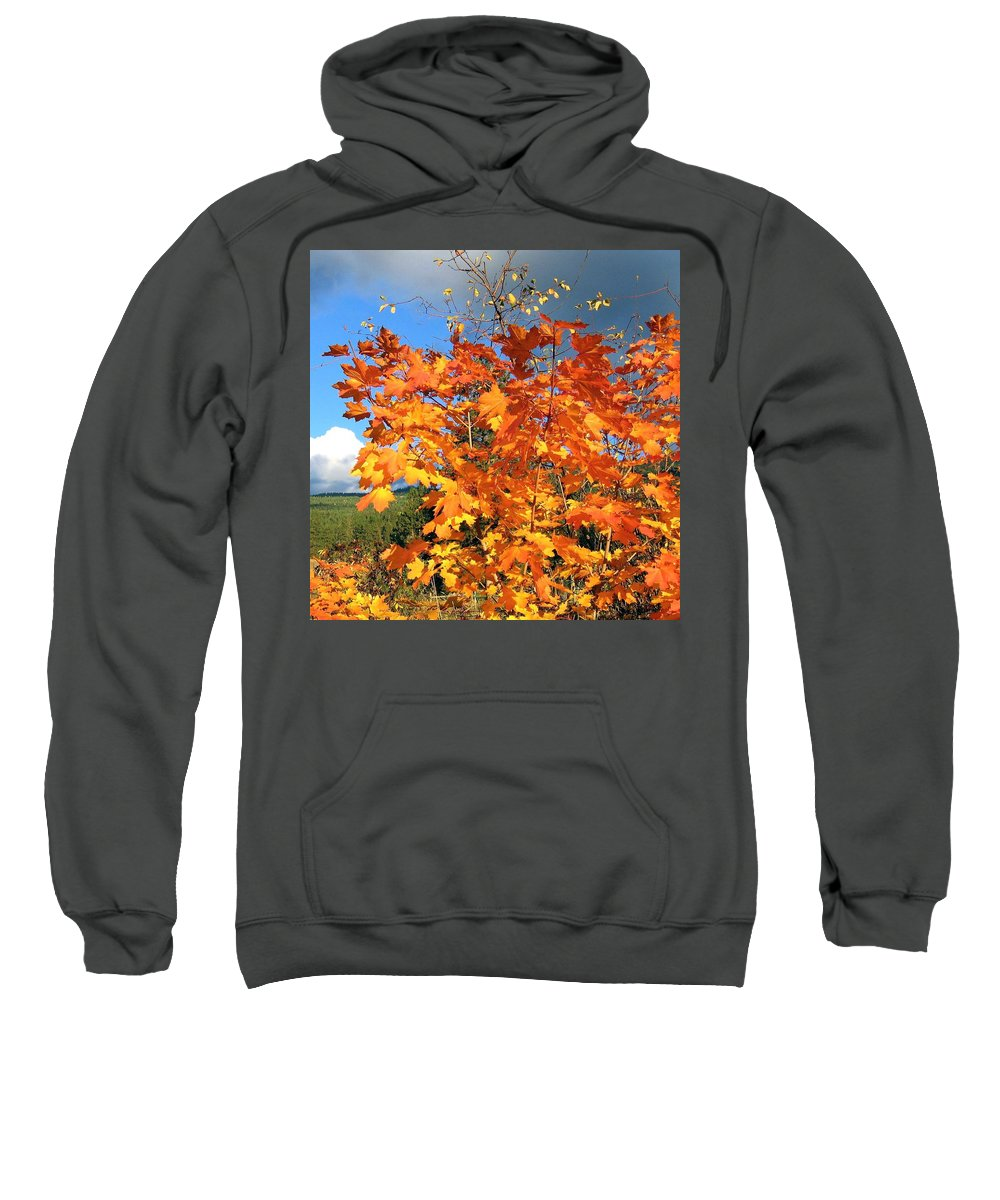 Autumn Sweatshirt featuring the photograph Maple Mania 8 by Will Borden