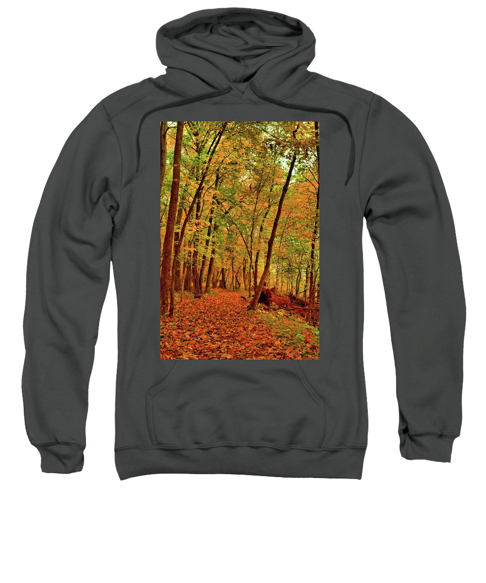 Maple Sweatshirt featuring the photograph Maple Woods Trail 2 by Bonfire Photography