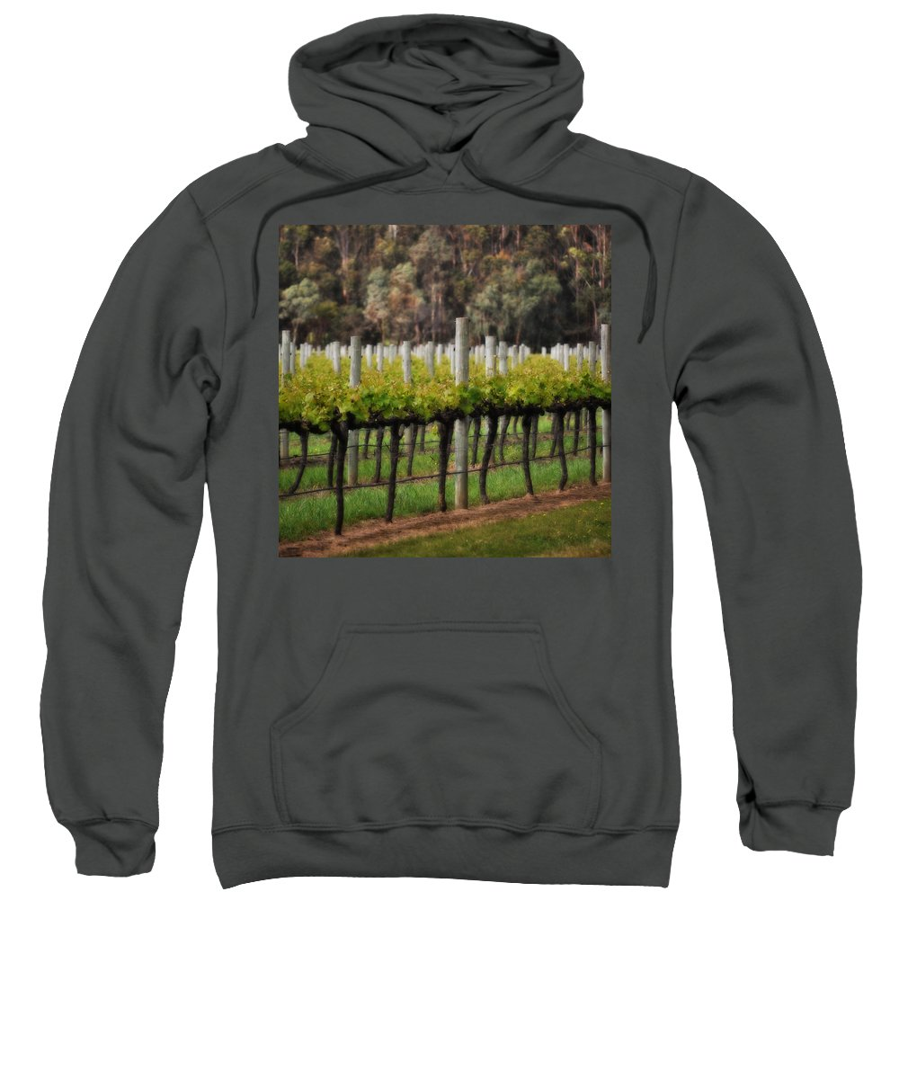 Landscapes Sweatshirt featuring the photograph Margaret River Vines by Phill Petrovic