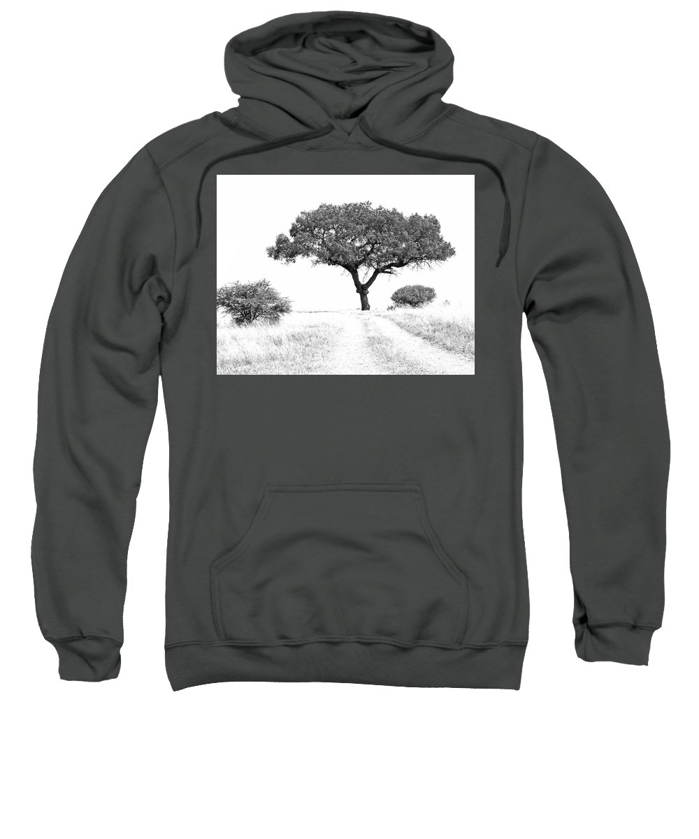 Tree Sweatshirt featuring the photograph Marula Tree by Suzanne Morshead