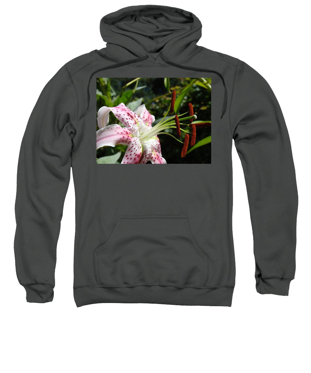Lilies Sweatshirt featuring the photograph Master Gardeners Art Floral Pink Lily Flower Baslee Troutman by Baslee Troutman