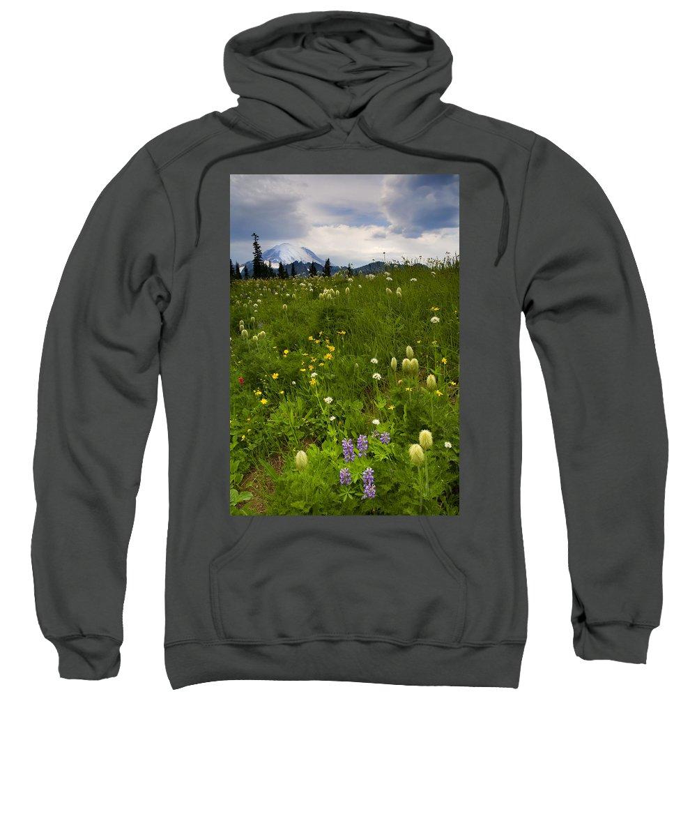 Rainier Sweatshirt featuring the photograph Meadow Beneath The Storm by Mike Dawson
