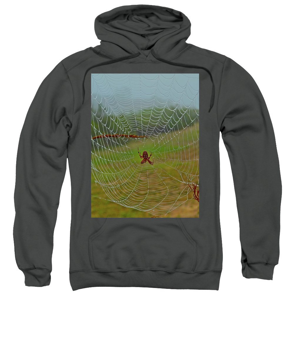 Spider Sweatshirt featuring the photograph Meadow Macrame by Diana Hatcher