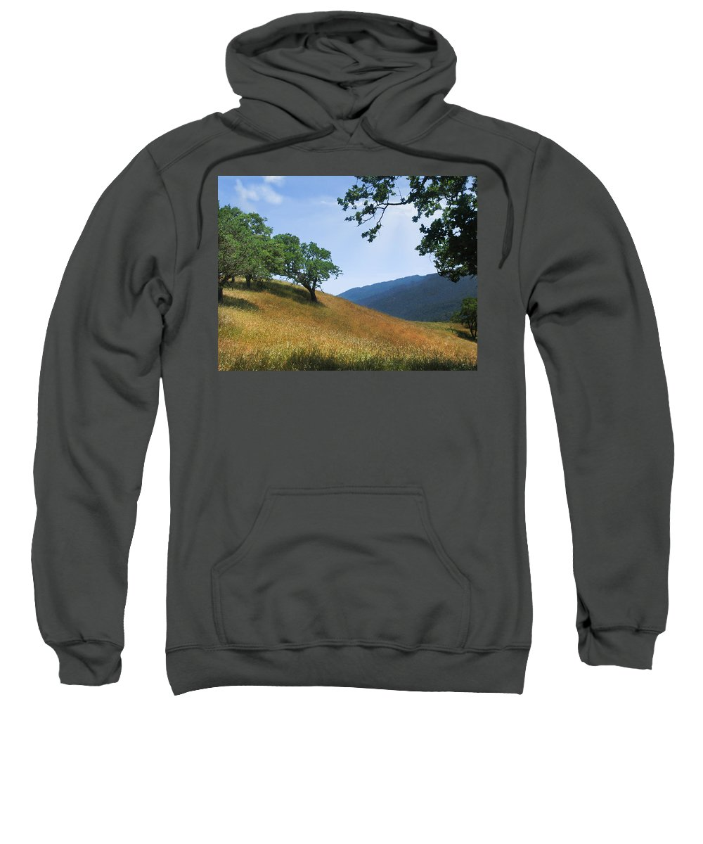 Landscape Sweatshirt featuring the photograph Meadow View Summer by Karen W Meyer