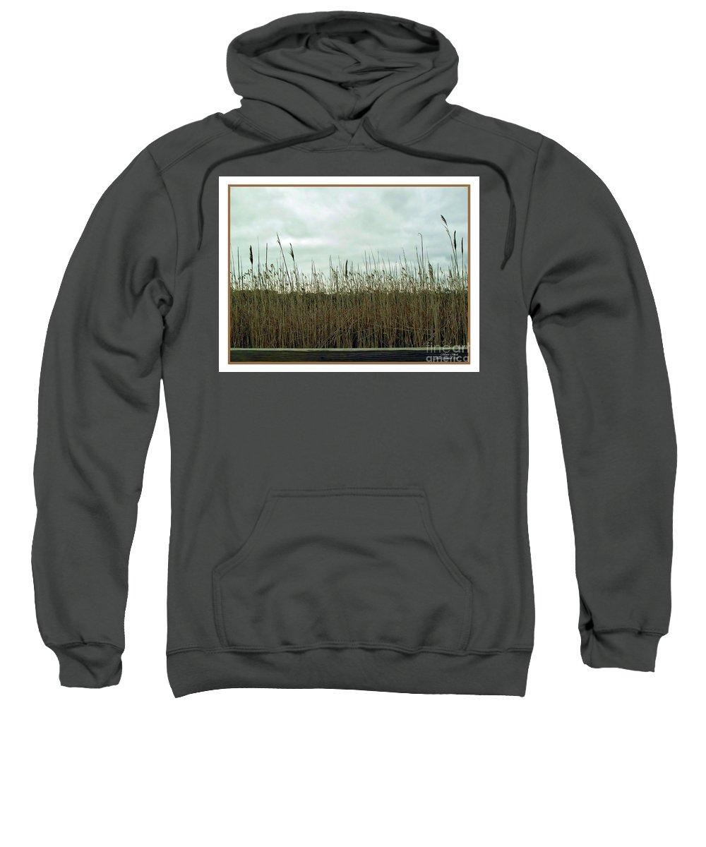 Botanical Sweatshirt featuring the photograph Mentor Marsh by Joan Minchak