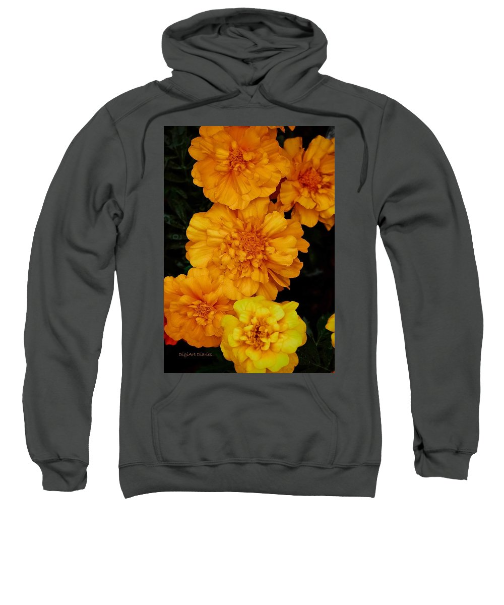 Marigolds Sweatshirt featuring the photograph Merry In Gold by DigiArt Diaries by Vicky B Fuller