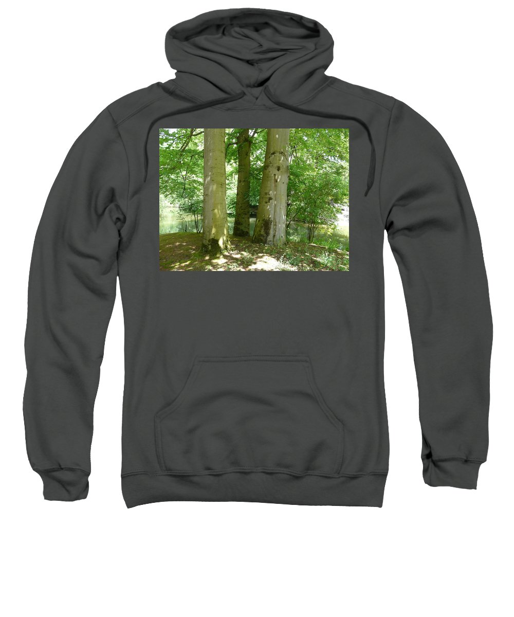 Landscape Sweatshirt featuring the photograph Mighty Beech Trees by Valerie Ornstein