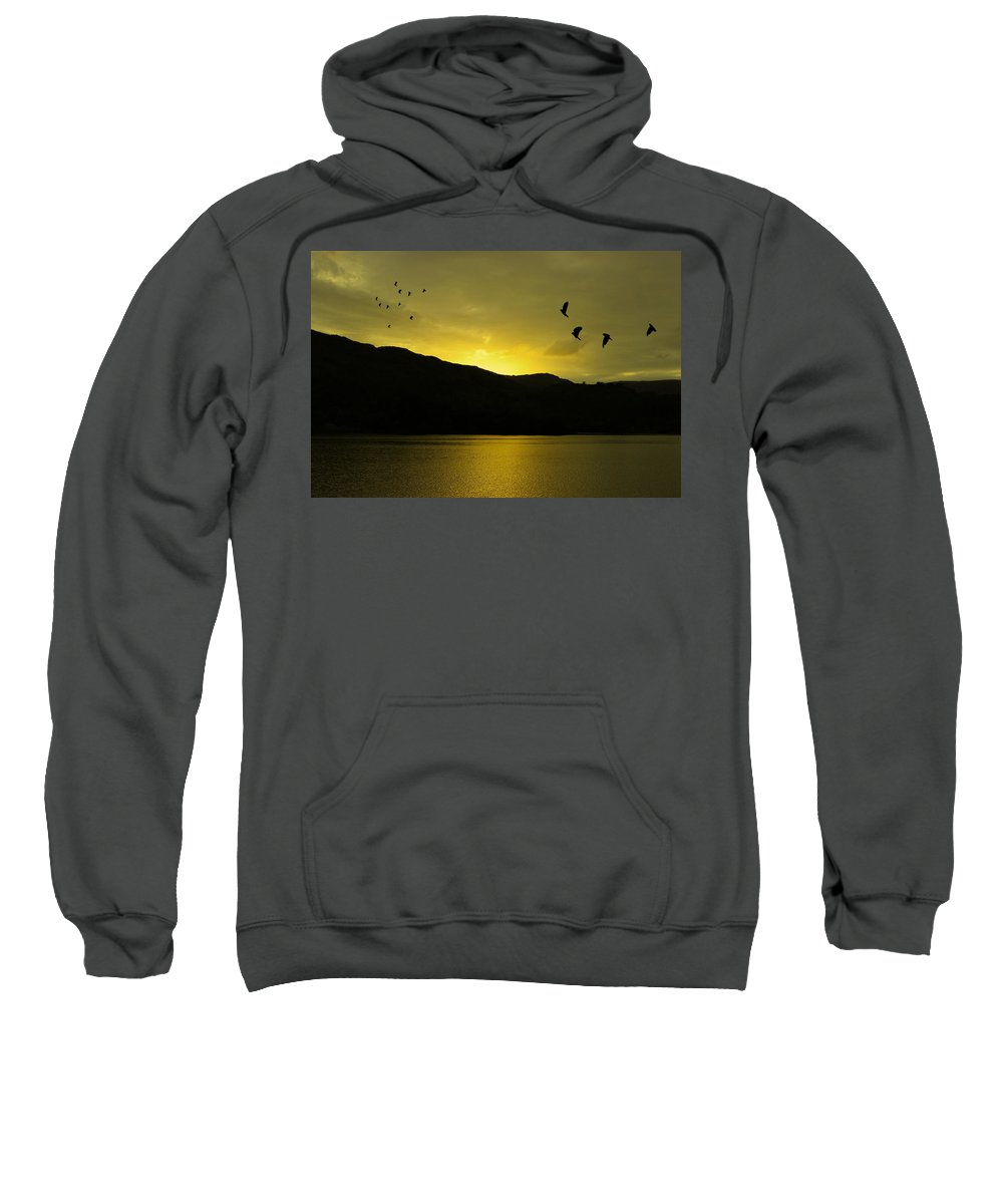Landscape Sweatshirt featuring the photograph Migration by Martin Newman