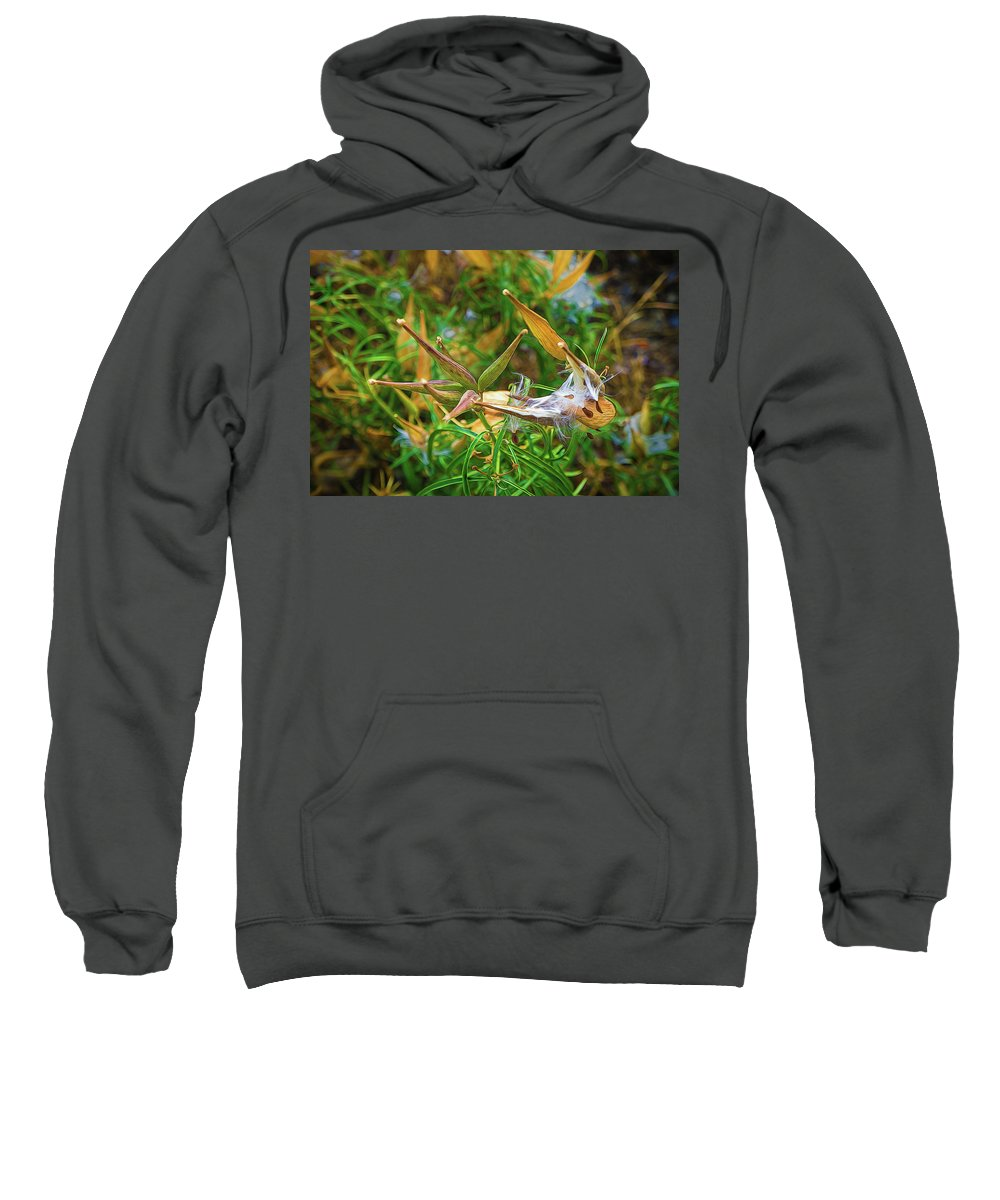 Nature Sweatshirt featuring the photograph Milkweed Waiting For The Monarchs by Kenneth Roberts