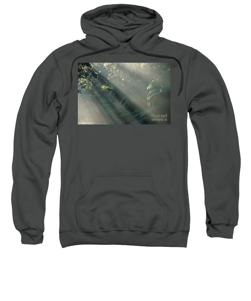 Afternoon Sweatshirt featuring the photograph Misty Greenery by William Waterfall - Printscapes