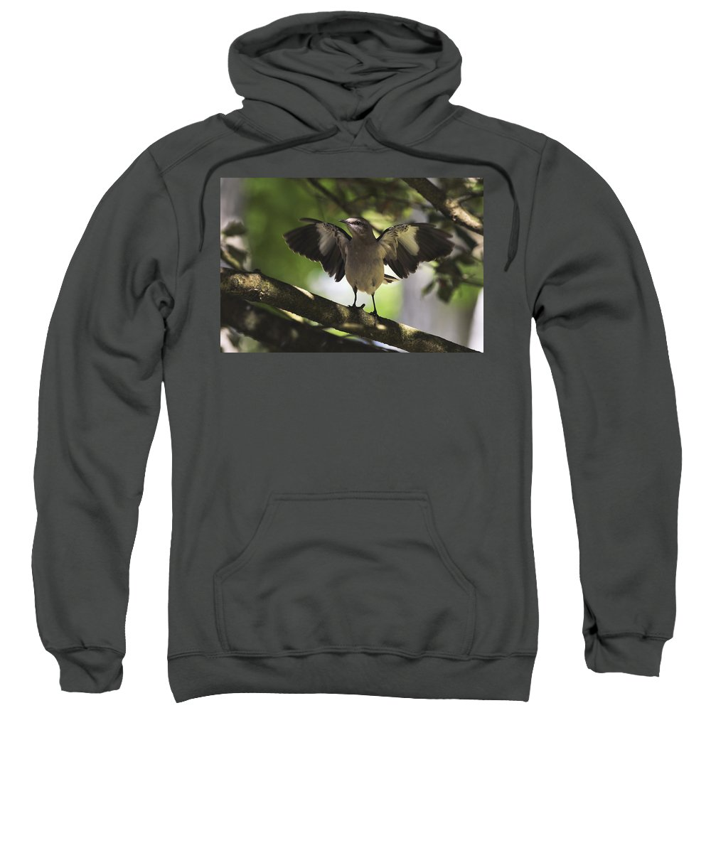Terry D Photography Sweatshirt featuring the photograph Mockingbird by Terry DeLuco