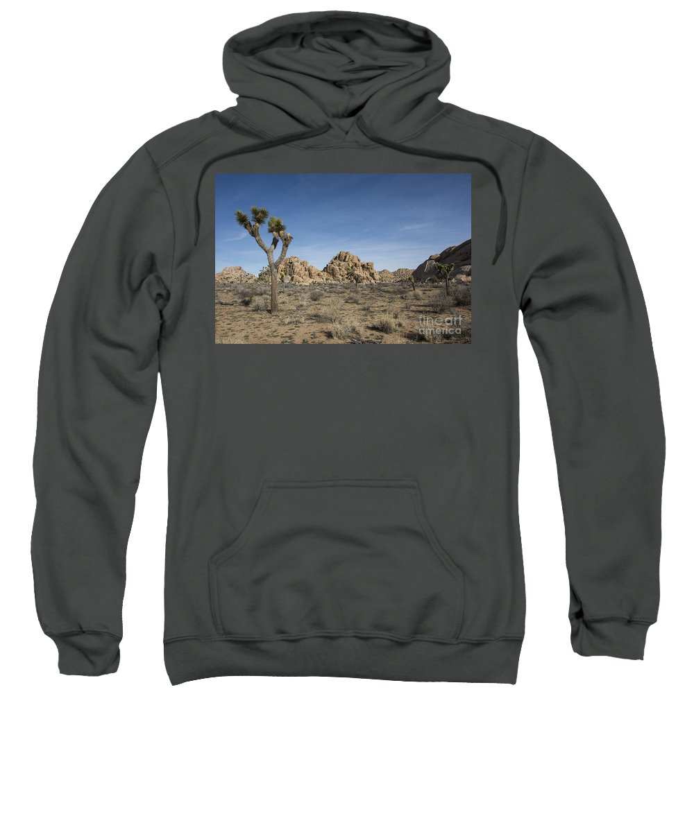 America Sweatshirt featuring the photograph Mohave Desert by Juli Scalzi
