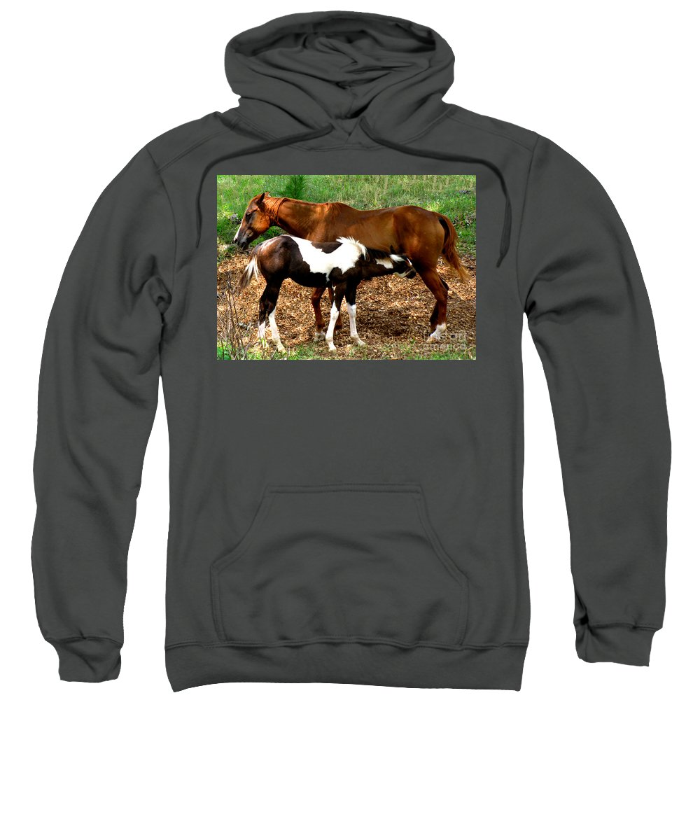Horses Sweatshirt featuring the photograph Mom And Baby by Donna Brown