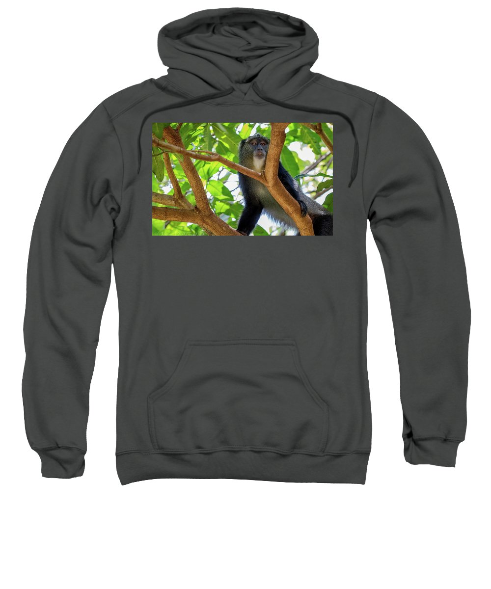 Monkey Sweatshirt featuring the digital art Monkey by Bert Mailer