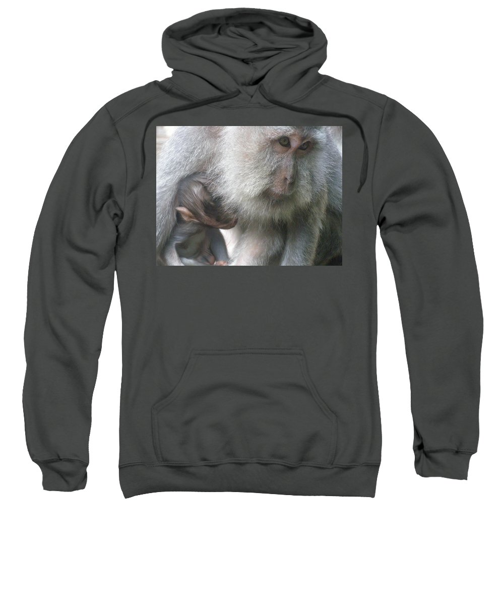 Bali Sweatshirt featuring the photograph Monkey Mother 3 by Mark Sellers