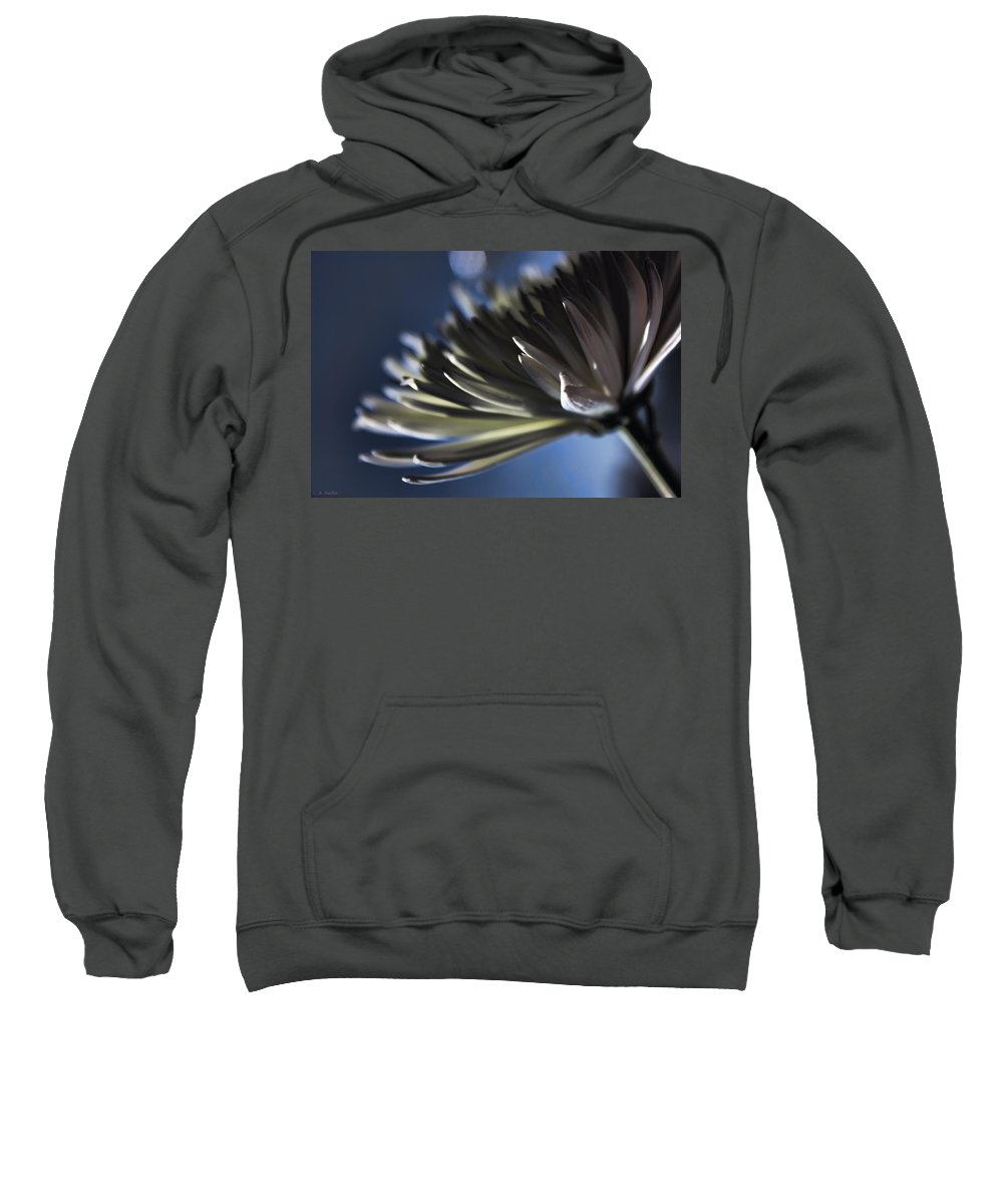 Macro Sweatshirt featuring the photograph Moonlit by Lauren Radke