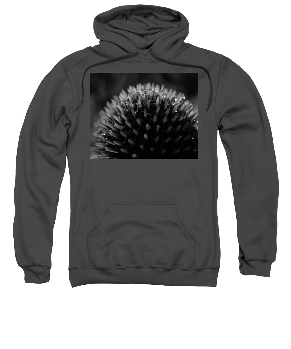 Cone Flower Sweatshirt featuring the photograph Morning Dew by Michael Lacy