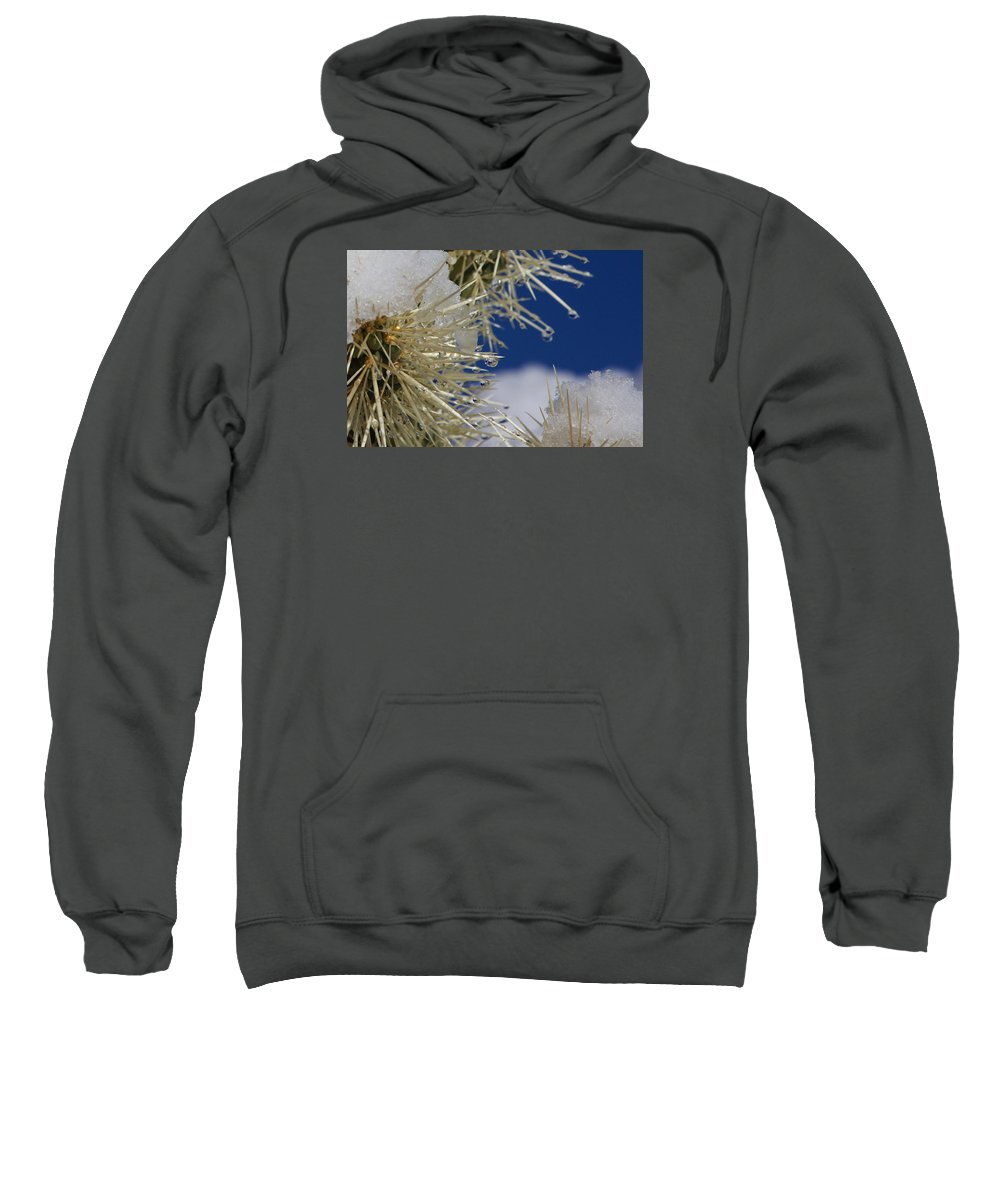 Sweatshirt featuring the photograph Morning Snow On Cactus Spines #1 by Eric Rosenwald