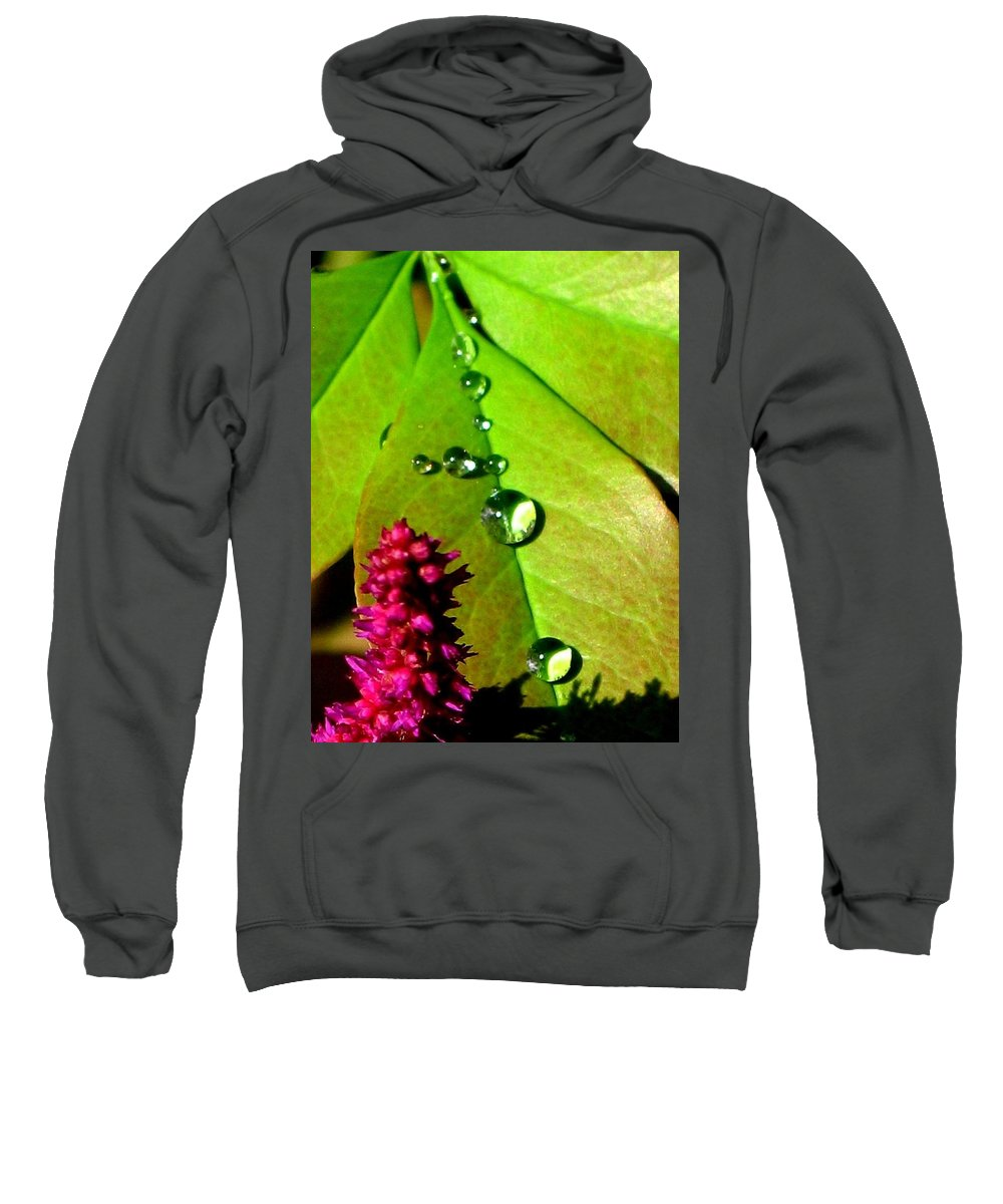 Floral Sweatshirt featuring the photograph Morning's Glory by Marla McFall