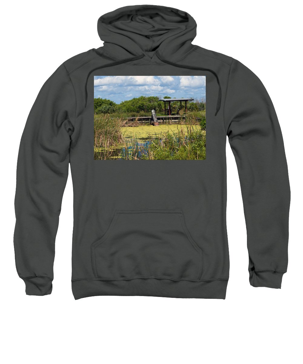 Florida; Mosquito; Coast; Flood; Flooding; Water; Salt; Marsh; Impoundment; Impound; Contain; Pond; Sweatshirt featuring the photograph Mosquito Impoundement In Florida by Allan Hughes