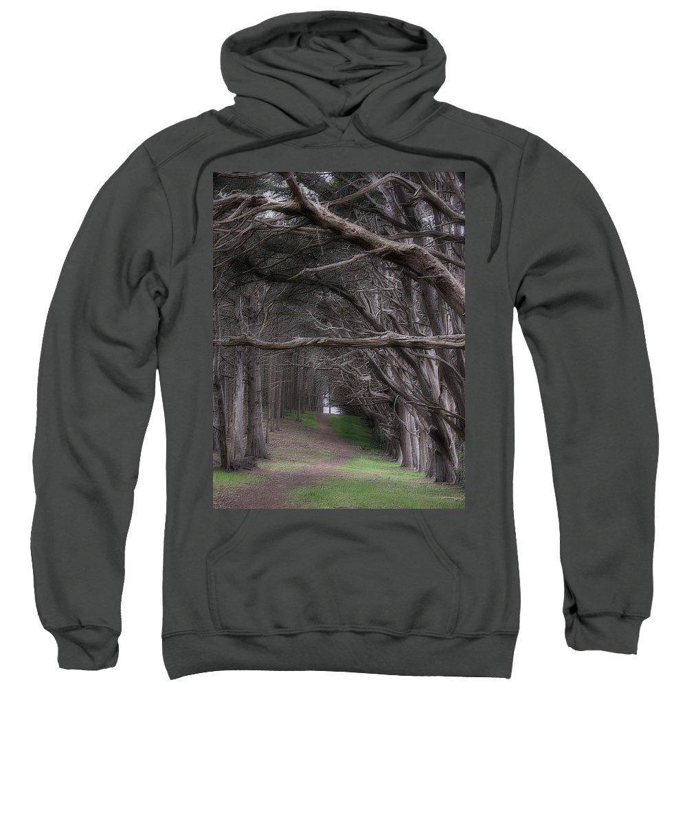 Landscape Sweatshirt featuring the photograph Moss Beach Trees 4191 by Karen W Meyer