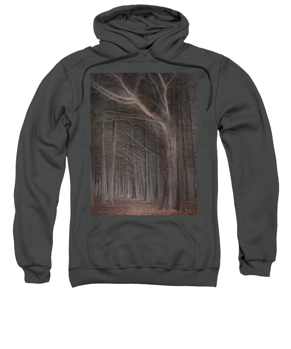 Landscapes Sweatshirt featuring the photograph Moss Beach Trees by Karen W Meyer
