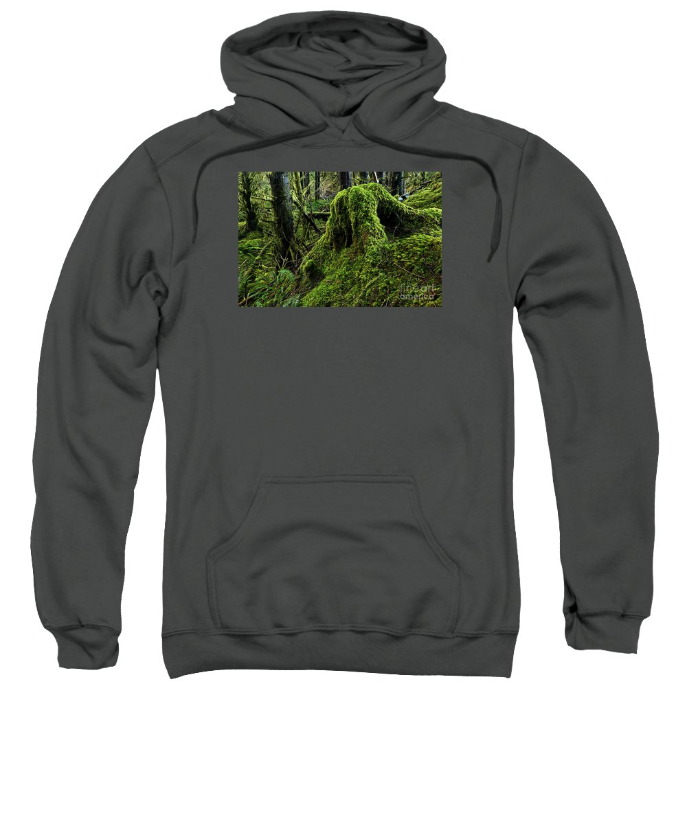 Sweatshirt featuring the photograph Moss Covered Tree Stump by Adam Jewell