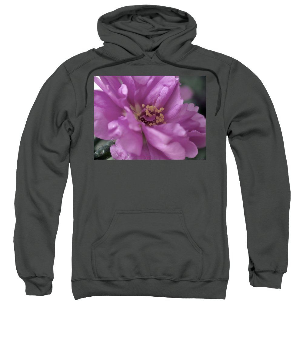 Macro Sweatshirt featuring the photograph Moss Rose II by Lauren Radke